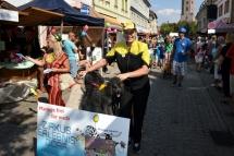 Sachsen-Anhalt-Tag_Festumzug_16