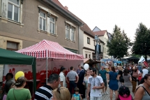 Sachsen-Anhalt-Tag_Praesentationsstand_01