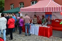 Salzlandfest_02