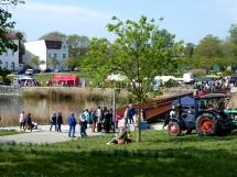 6. Kirschblütenfest